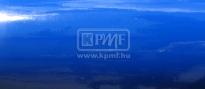 KPMF K88064 ultramarin