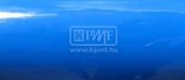 KPMF K88069 marina
